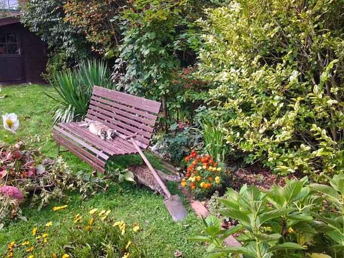Gartenfreunde, Gartenbank